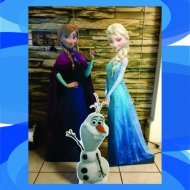 display_frozen